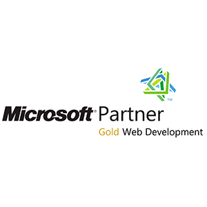 Microsoft Partner-2011